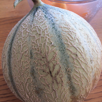 """Melon de Provence """"cantalou"""""""